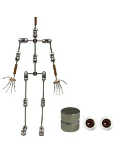 Animation Supplies Bundle Deal - Professional Armature Kit, Standard Tie-Down Magnets and Brown Acrylic Eyes